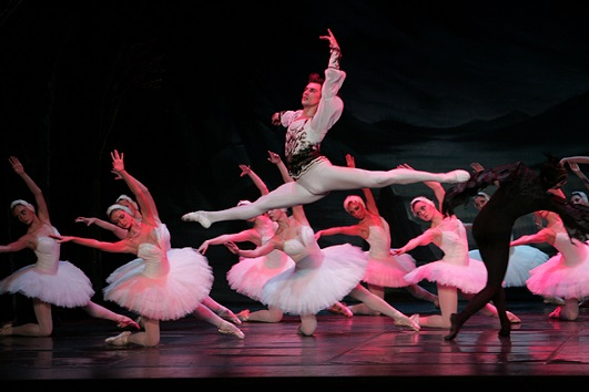 Swan Lake final fight scene with Dmitri Akulinin and Von Rothbart.
