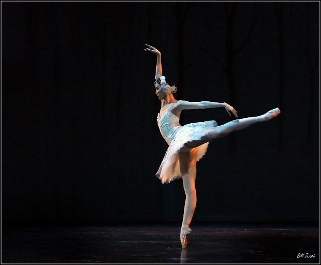 The Liaoning Ballet's Yu Chuanya performing in the opening night of Joburg Ballet's Swan Lake. Photo by Bill Zurich