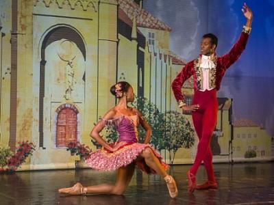 A few surprises revealed in Joburg Ballet's Don Quixote casting